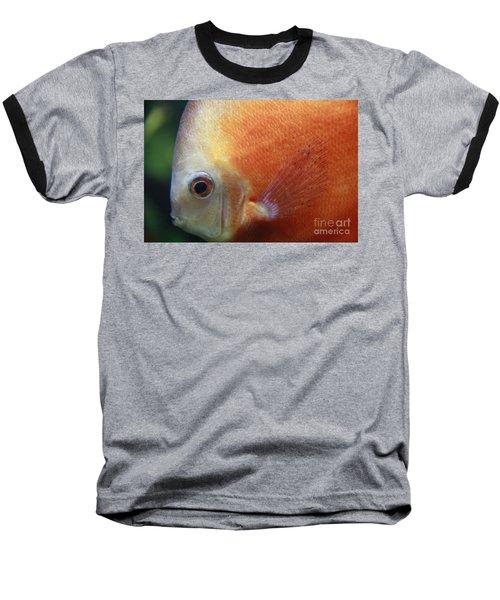 Orange Discus Baseball T-Shirt