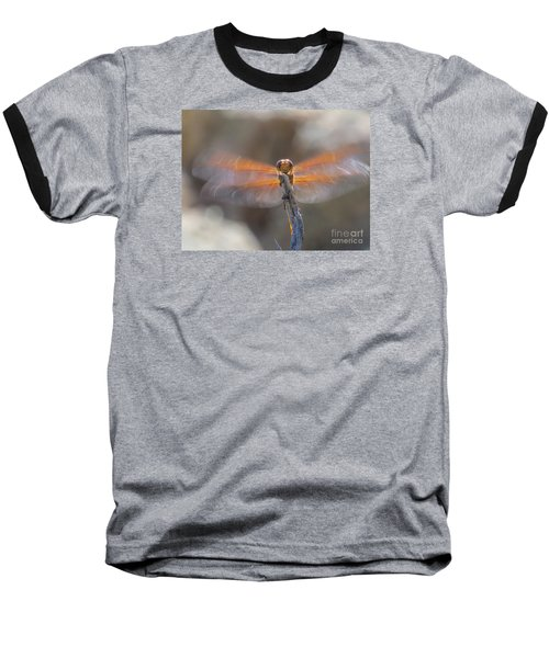 Dragonfly 4 Baseball T-Shirt