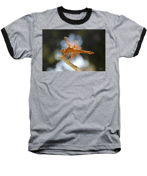 Orange Dragonfly Baseball T-Shirt