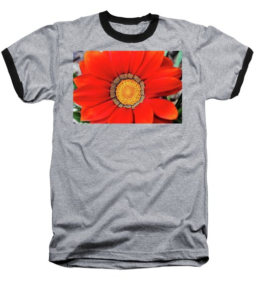 Orange Gazania With Texture Baseball T-Shirt by Trina Ansel