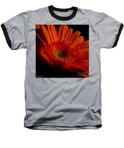 Orange Gerbera Baseball T-Shirt