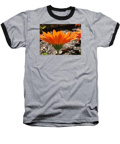 Orange Glory Baseball T-Shirt