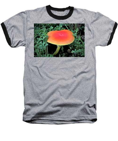 Orange Glow  Baseball T-Shirt