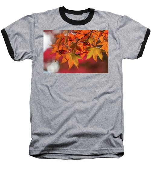 Baseball T-Shirt featuring the photograph Orange Maple Leaves by Clare Bambers