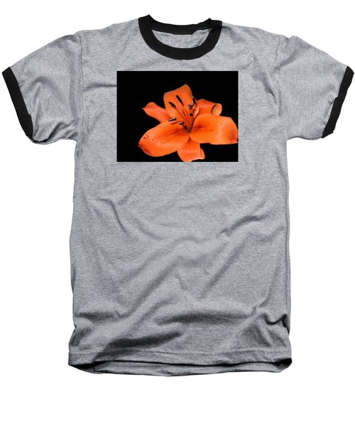 Baseball T-Shirt featuring the photograph Orange Orchid On Black by Karen Nicholson