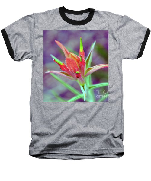 Orange Paintbrush Flower Baseball T-Shirt