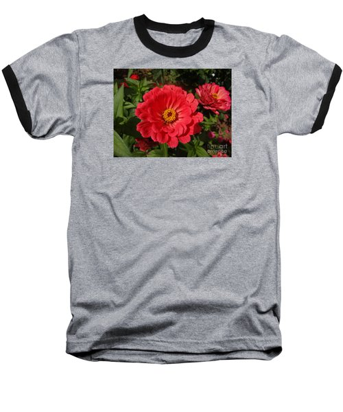 Orange Red Zinnia Baseball T-Shirt by Rod Ismay