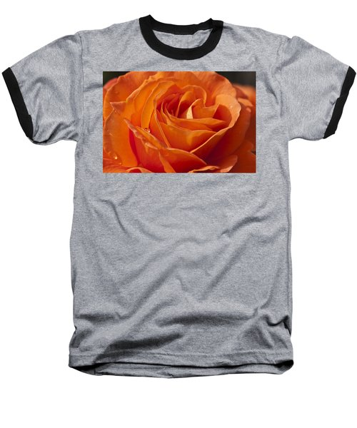 Orange Rose 2 Baseball T-Shirt by Steve Purnell
