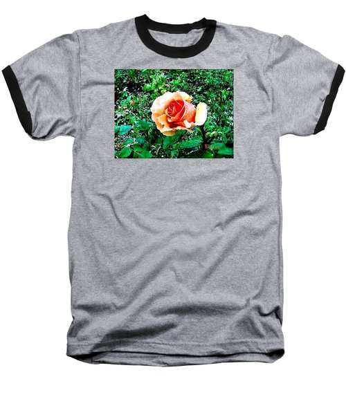 Baseball T-Shirt featuring the photograph Orange Rose by Sadie Reneau