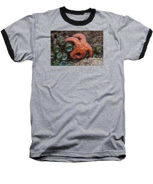 Orange Starfish And Anemonies Baseball T-Shirt by Chuck Flewelling