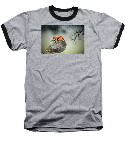 Orange Stink Bug 001 Baseball T-Shirt