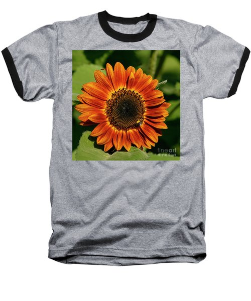 Orange Sunflower Baseball T-Shirt