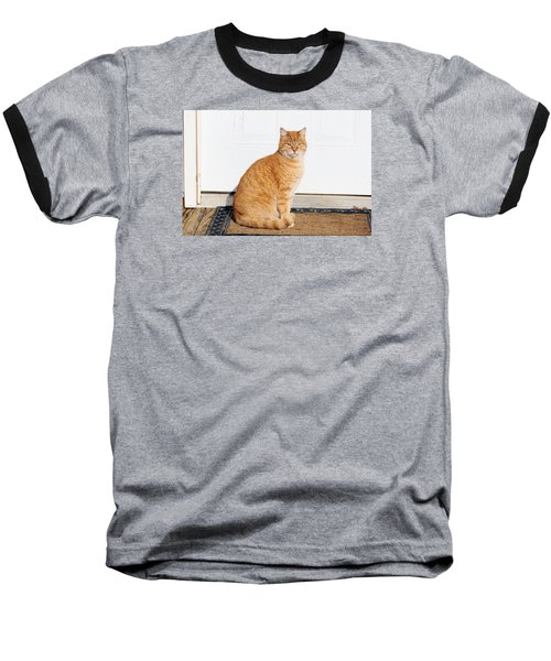 Baseball T-Shirt featuring the digital art Orange Tabby Cat by Jana Russon