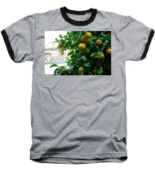 Orange Tree Baseball T-Shirt