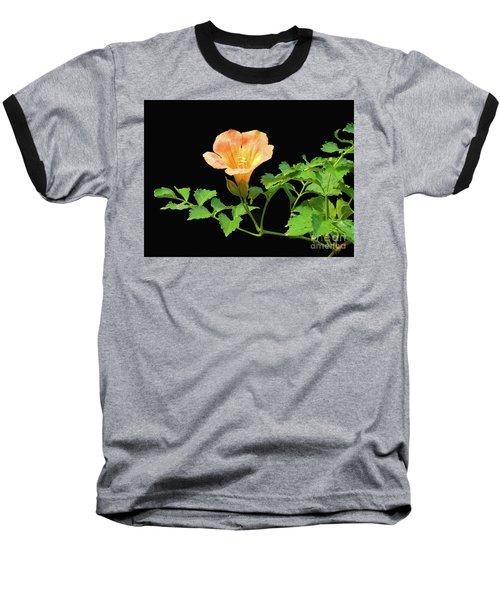 Orange Trumpet Flower Baseball T-Shirt by Susan Lafleur