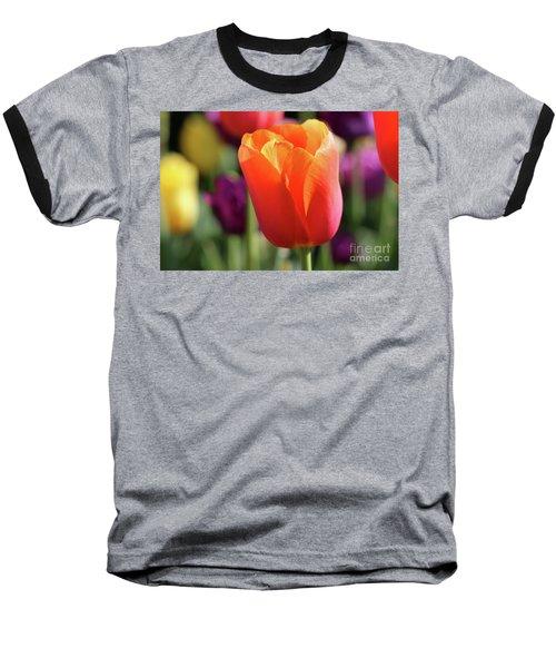 Orange Tulip In Franklin Park Baseball T-Shirt