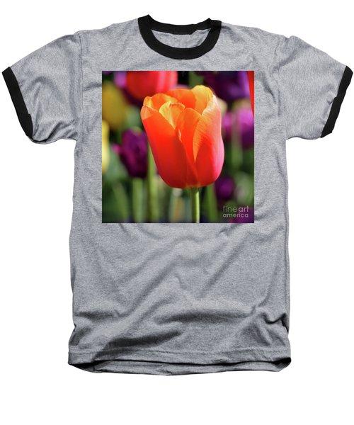 Orange Tulip Square Baseball T-Shirt