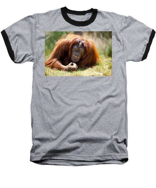 Orangutan In The Grass Baseball T-Shirt by Garry Gay