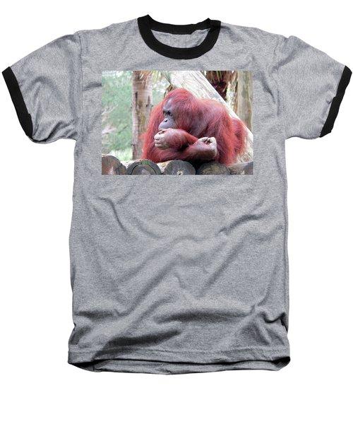 Orangutang Contemplating Baseball T-Shirt by Rosalie Scanlon