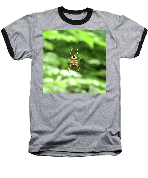 Orb Weaver Baseball T-Shirt