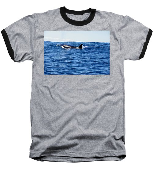 Orca Baseball T-Shirt by Marilyn Wilson