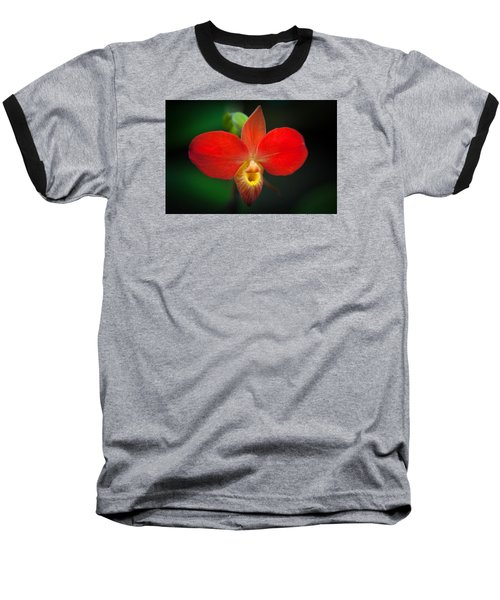 Orchard  Baseball T-Shirt