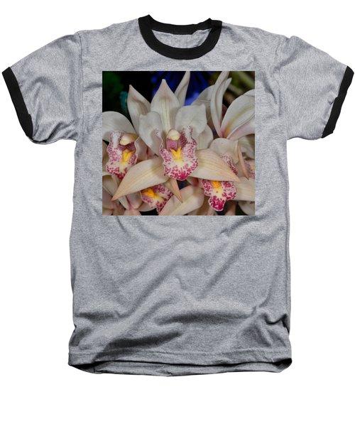 Orchid 348 Baseball T-Shirt