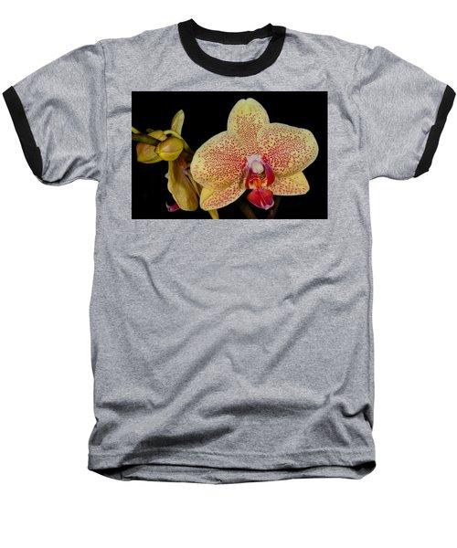 Orchid 377 Baseball T-Shirt