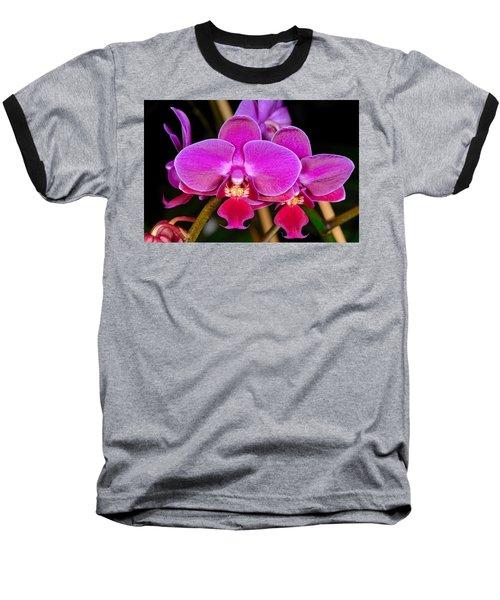 Orchid 422 Baseball T-Shirt