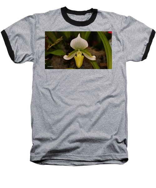 Orchid Flower 42 Baseball T-Shirt