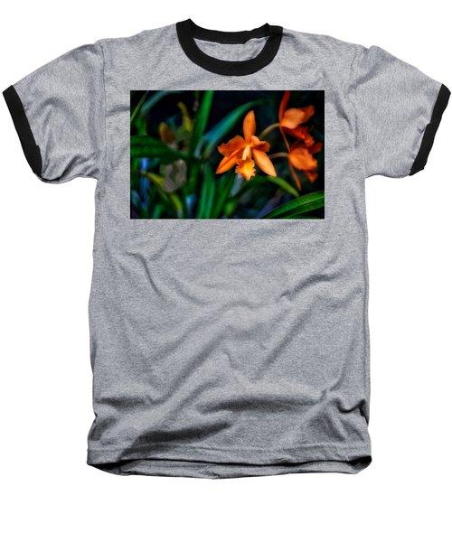 Orchid Garden Baseball T-Shirt
