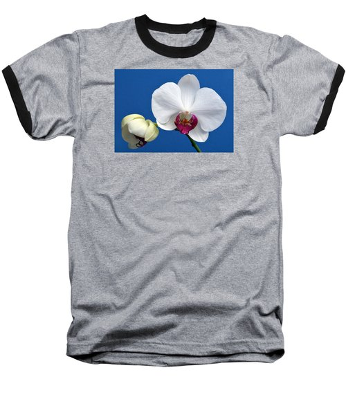 Orchid Out Of The Blue. Baseball T-Shirt by Terence Davis