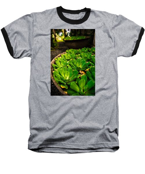 Orchid Pond Baseball T-Shirt