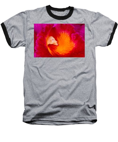 Orchid Vortex 458 Baseball T-Shirt