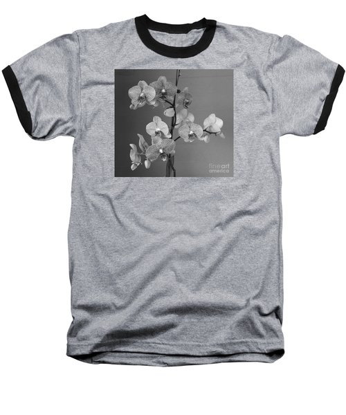 Orchids Black And White Baseball T-Shirt by Jeanette French