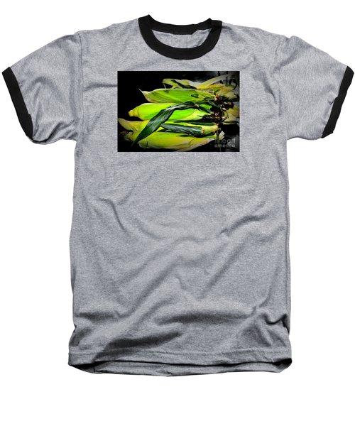 Baseball T-Shirt featuring the photograph Organic Corn 2 by Tanya Searcy