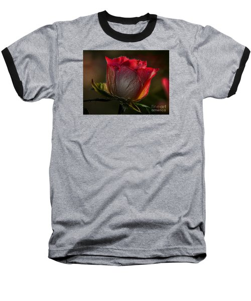 Organic Rose Baseball T-Shirt