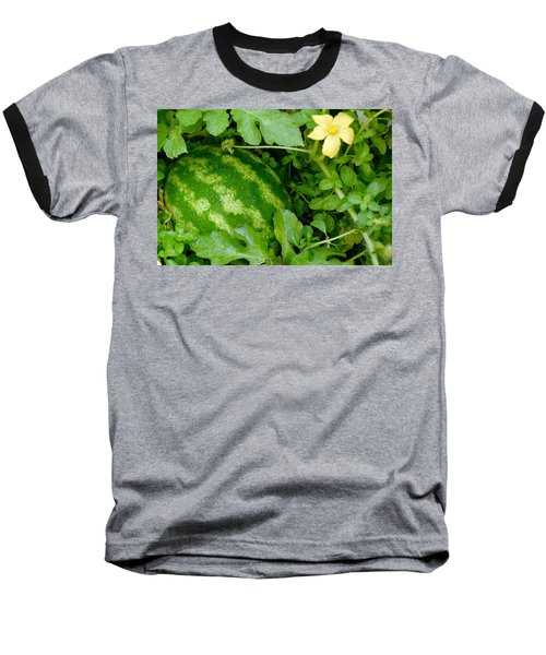 Organic Watermelon Baseball T-Shirt