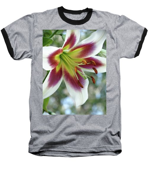 Oriental Lily In Summer Sunset Baseball T-Shirt by Rebecca Overton
