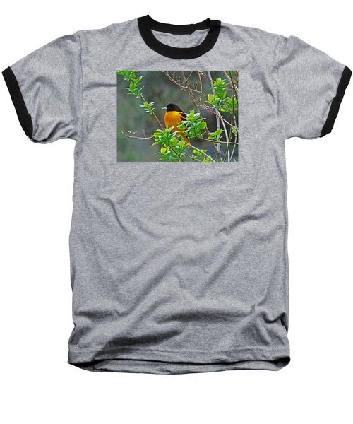 Oriole On The Lilac Baseball T-Shirt by Larry Capra