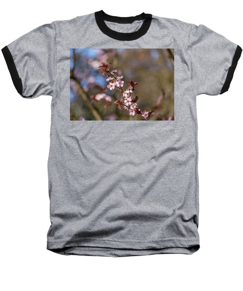 Purple Leaf Sandcherry Blossoms Baseball T-Shirt