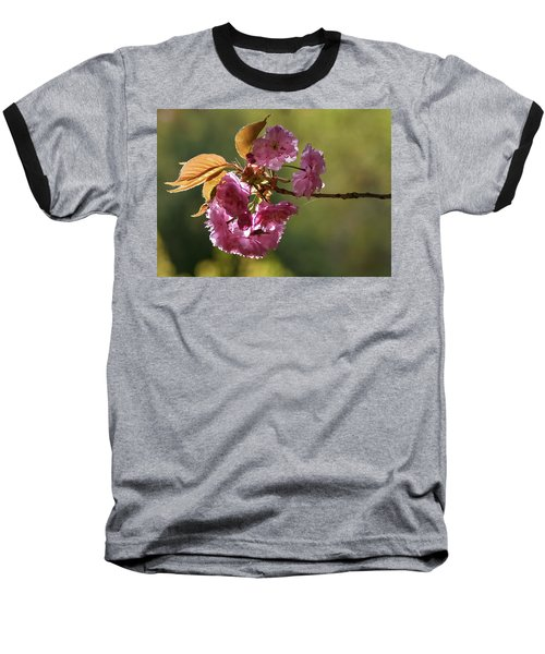 Ornamental Cherry Blossoms - Baseball T-Shirt
