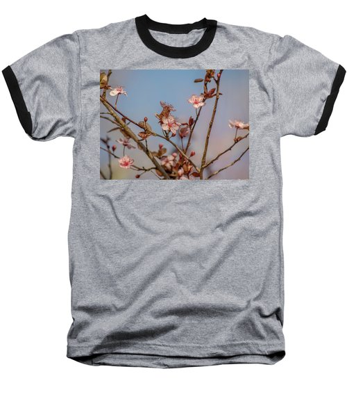 Purple Leaf Sandcherry Blossoms Baseball T-Shirt