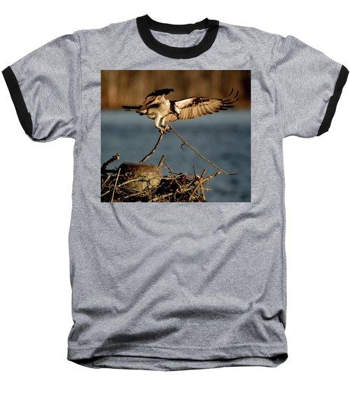 Osprey 2017-3 Baseball T-Shirt