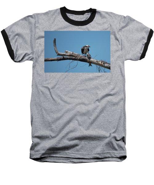 Osprey And Fish Baseball T-Shirt