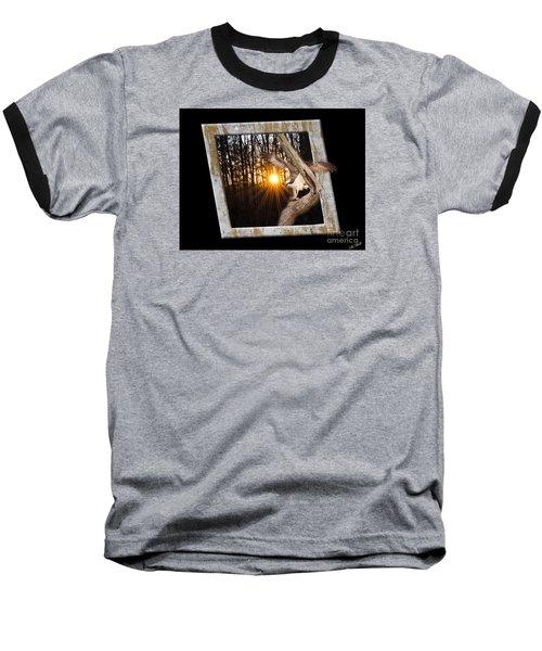 Osprey At Sunset  Black Baseball T-Shirt by Donna Brown
