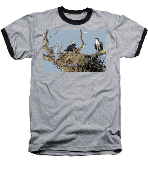 Osprey Family Baseball T-Shirt