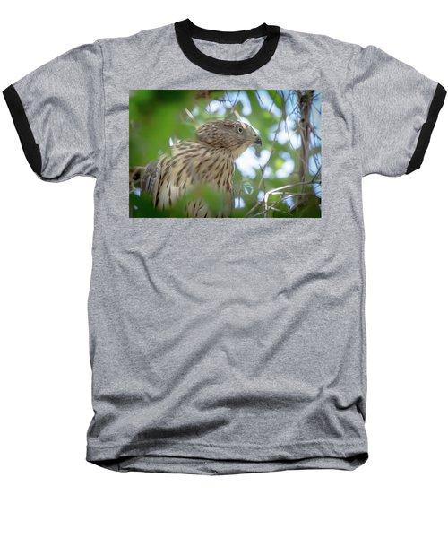 Red-shouldered Hawk Fledgling 1 Baseball T-Shirt