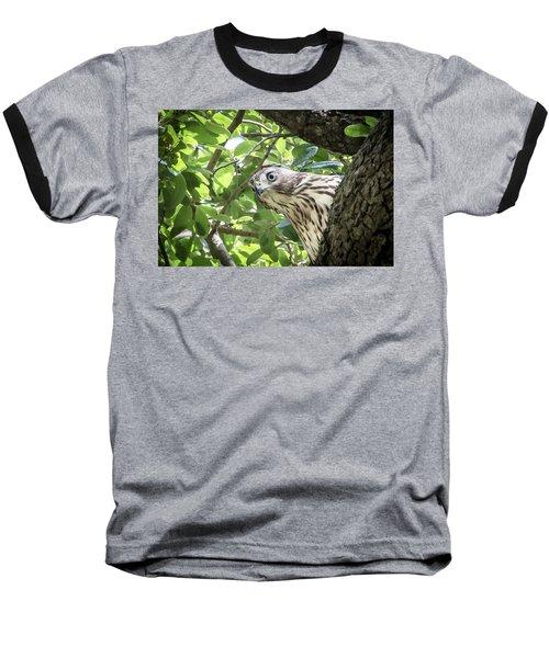 Red-shouldered Hawk Fledgling - 5 Baseball T-Shirt