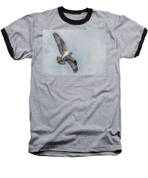 Osprey In Flight Baseball T-Shirt